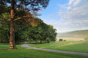 Road to Glen Gordon Manor