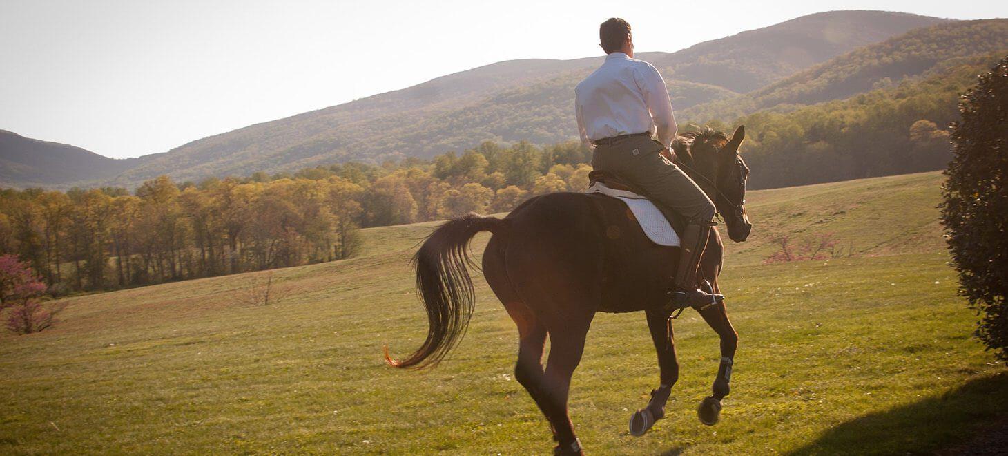 Man riding a horse through a meadow