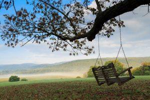Tree swing at Glen Gordon Manor
