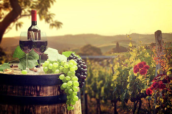Top Northern Virginia Wineries Amp Wine Tasting