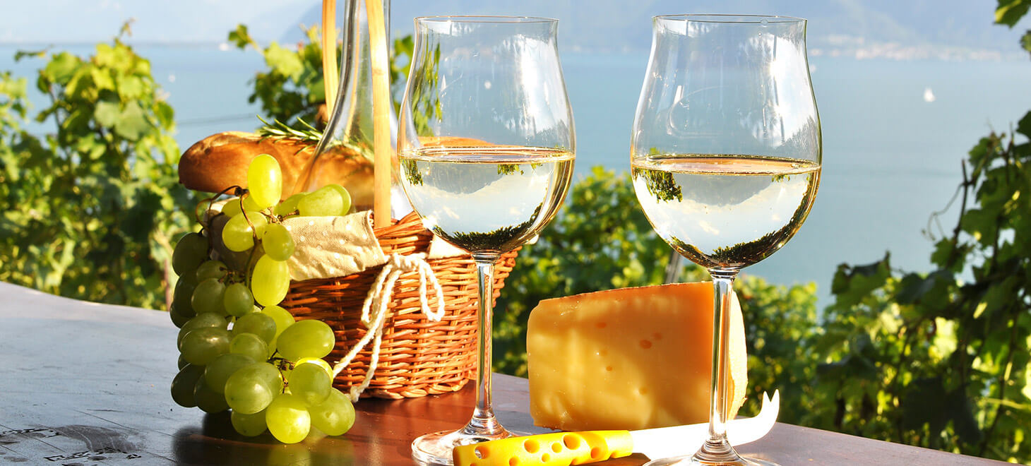 Wine, cheese and grapes in a basket at a vineyard