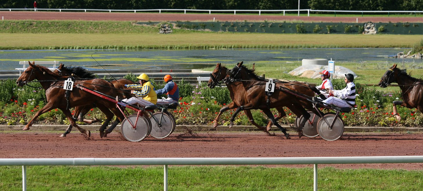 Harness Racing in Virginia