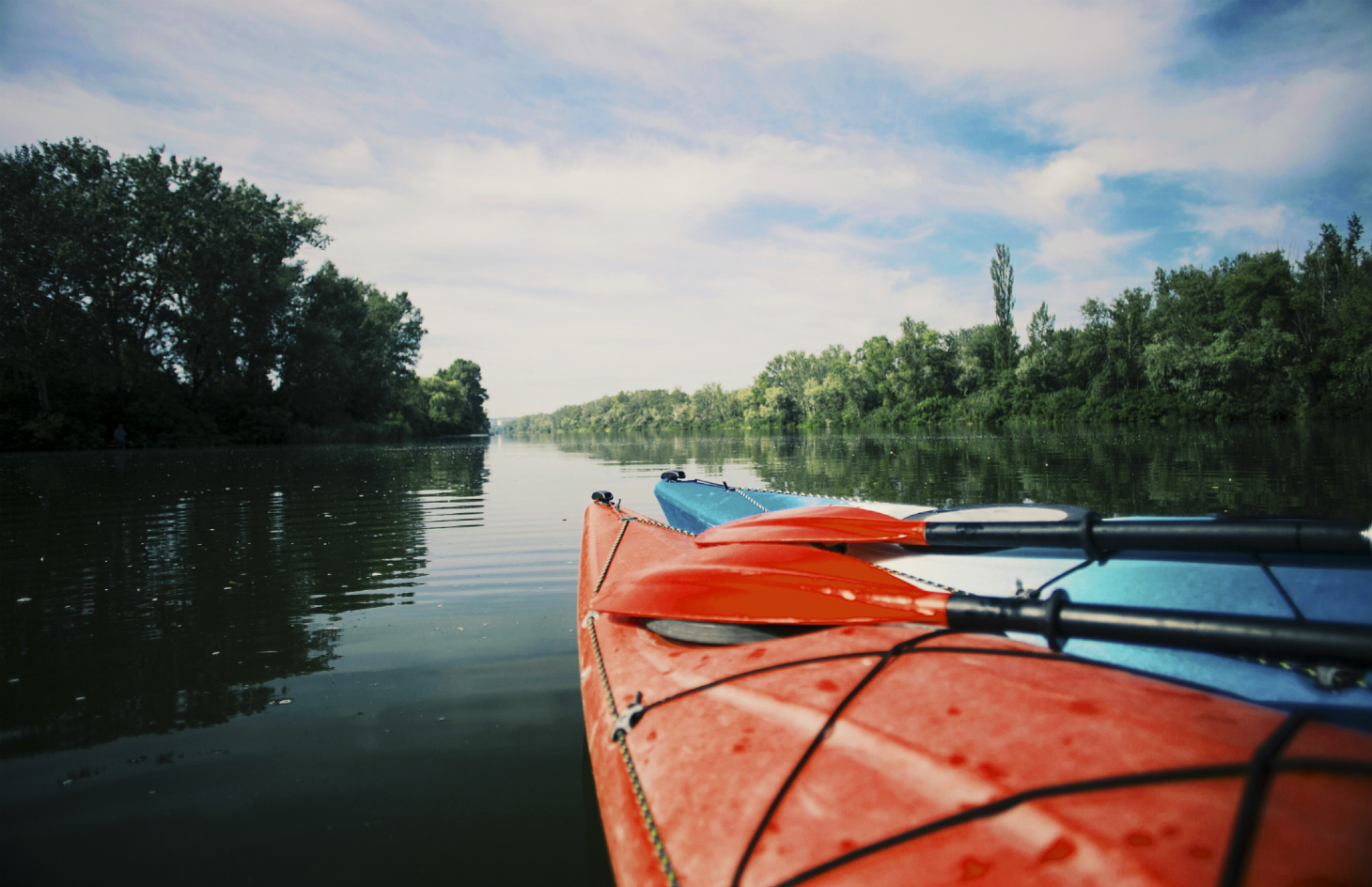 Kayaking Adventure in the Shenandoah River