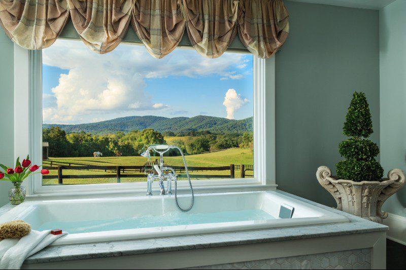 bathtub overlooking scenery