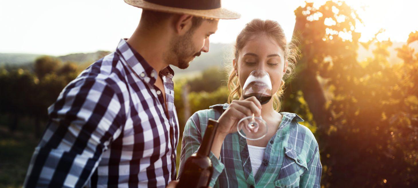 Wine Tasting in Virginia - a Honeymoon